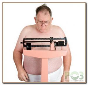 1. Жиры в обмене веществ