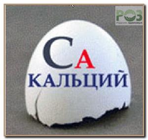 kalciy