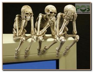 osnova skeleta-ca